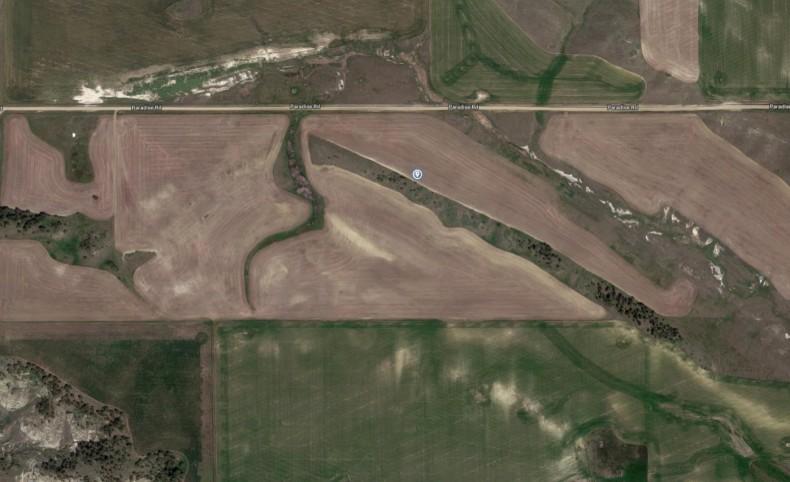 Winifred Farmland