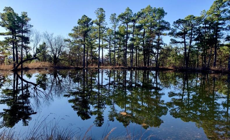 Jackfork Hunting Retreat #2