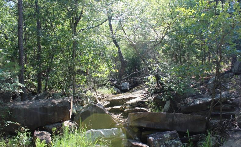 Mountain Fork Creek Ranch