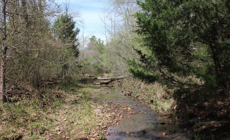 Pashubbe Creek