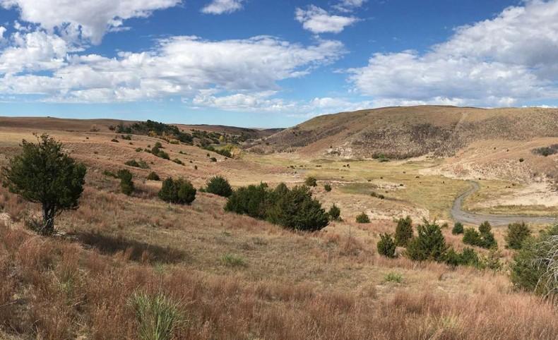 Leander Creek 2440 Acres